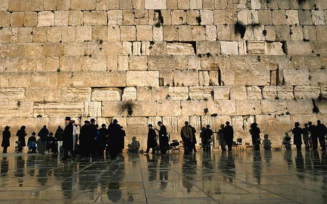 «Твоих камней, Иерусалим...»