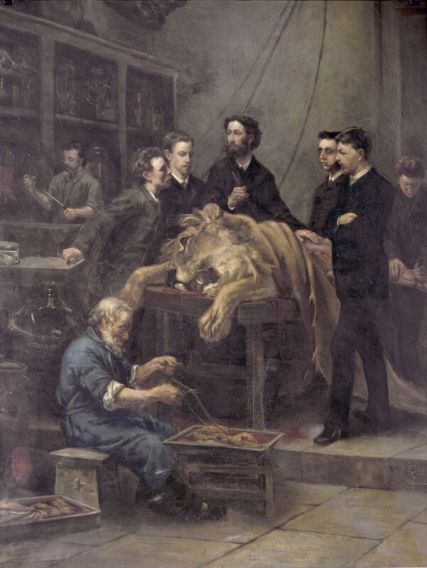 The Anatomy Lesson of Max Weber