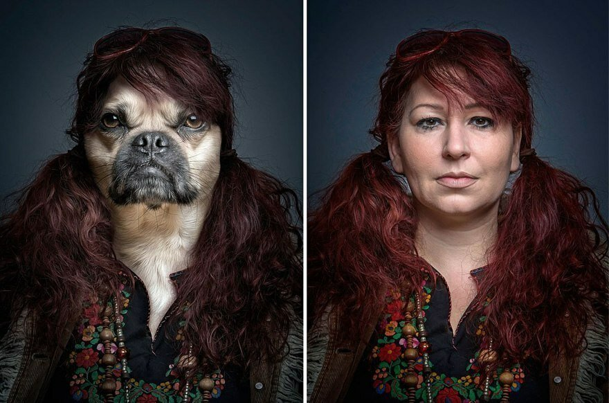 Собаки и их хозяева с необычной точки зрения