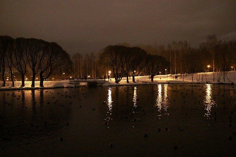 Световые дорожки фонарей, черные ивы и водопадный мостик у верхнего пруда