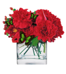 romantic-flower-sg99-tube-colombe.png