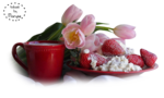 MR_Tulipes-Lait-Fraises.png