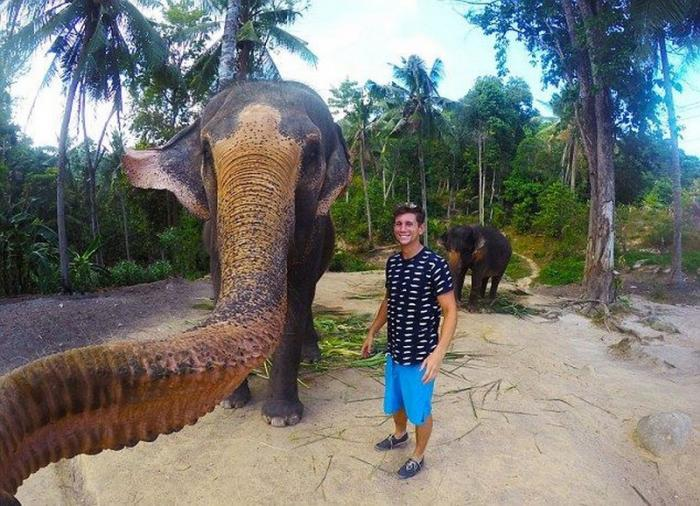 Слон сфотографировался с туристом на память