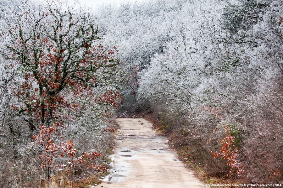 Там, где закончилась зима