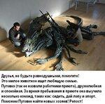 Ho_Xpyo49iI.jpg