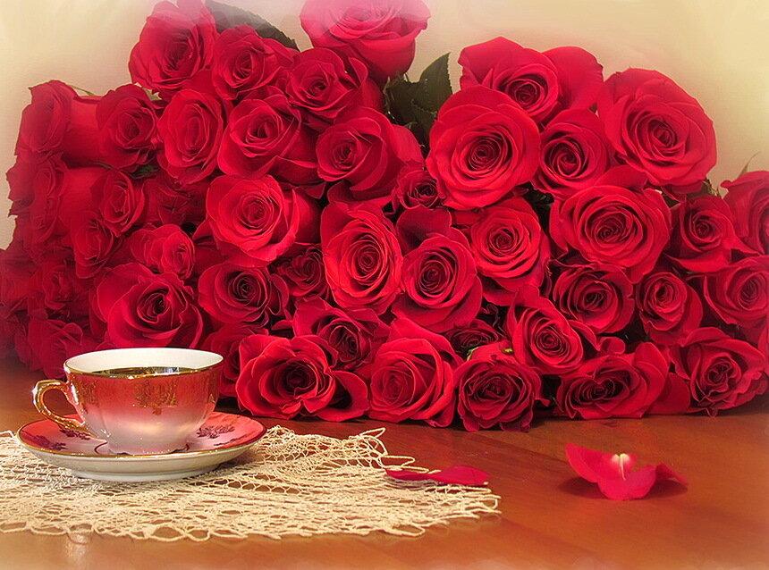 Картинки любимой женщине с добрым утром и большими цветами роз, открытки девушке картинки