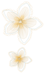 Vpearce_JB_embroidery05.png