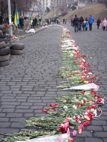 maidan march 2014
