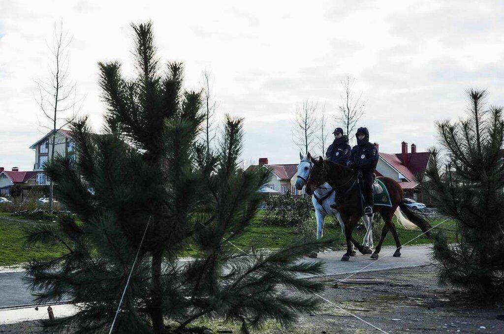 Конные патрули на дорогах и улицах города (2)
