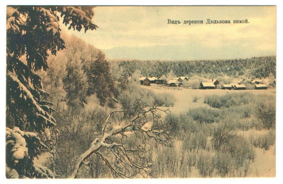 Вид деревни Дюдьково зимой