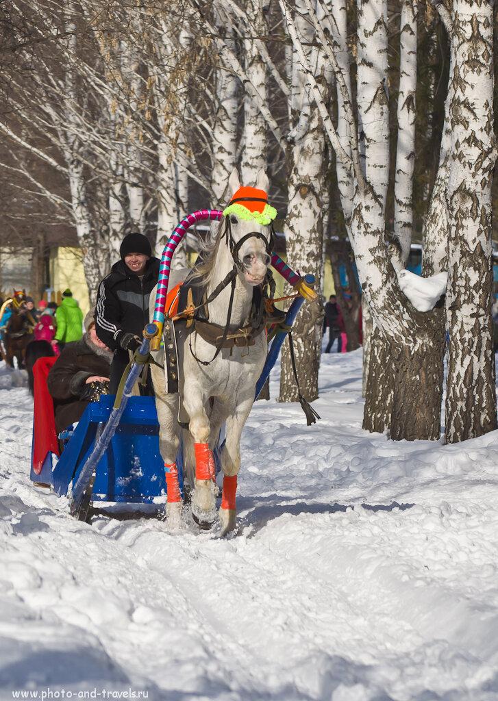 Мороз и солнце! День чудесный. Но не для лошадей... Хотя, и конь и хозяин улыбаются, как видно, на все 32 зуба... ;) Фотоаппарат Nikon D5100 и объектив Nikon 70-300mm.