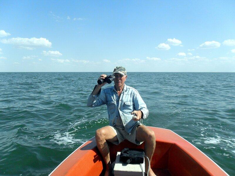 В море, август