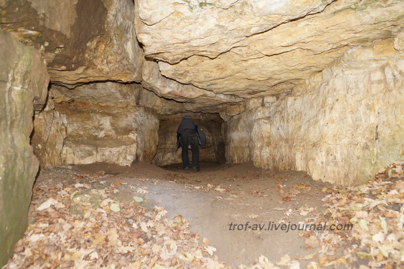 Пещера, Полушкинские (Васильевские) каменоломни, Московская обл