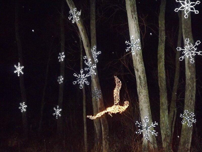 Волшебный лес-2013.