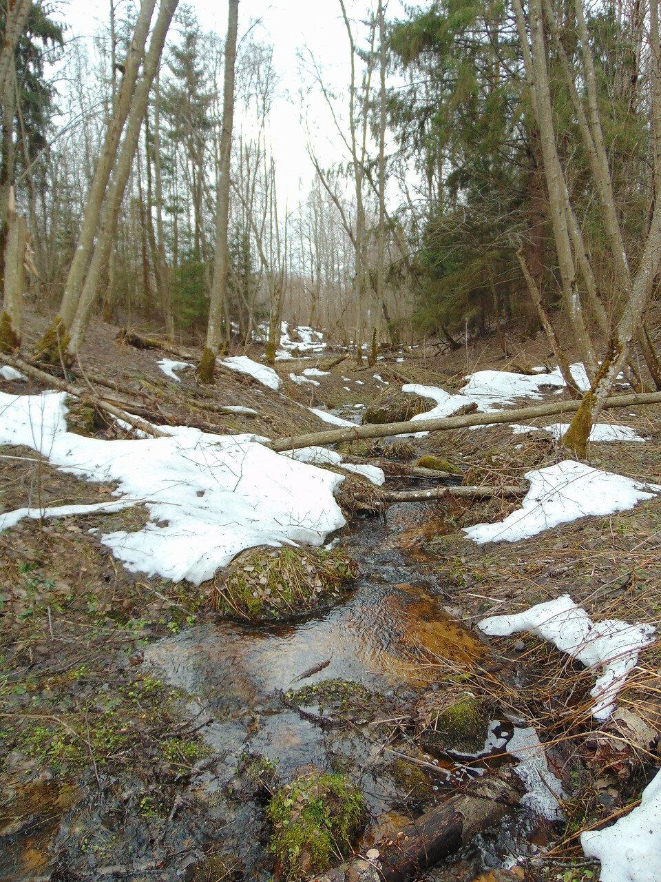 Последний снег превращается в ручьи.