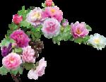 Holliewood_SpringFaeries_Flowers1.png
