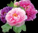 Holliewood_SpringFaeries_Flowers4.png