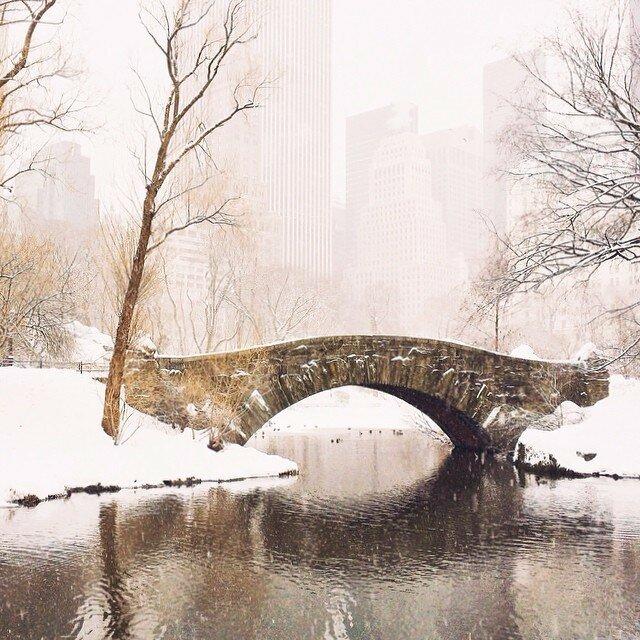 New York Lucas Whitaker