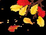 Осенний клипарт.Листья.