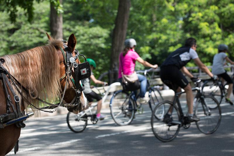 Нью Йорк Центральный Парк