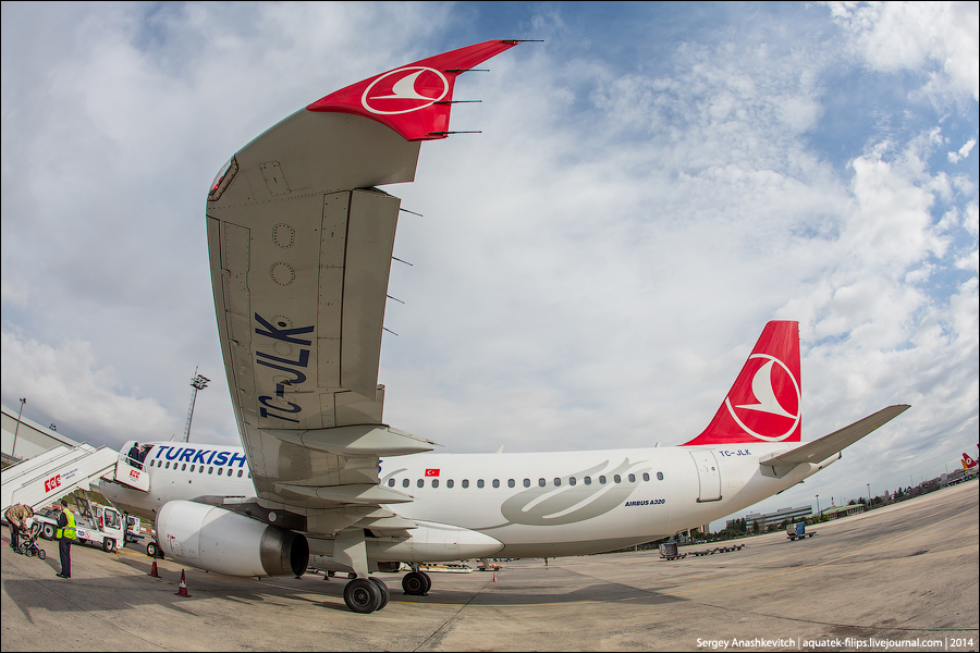 В Стамбул с Turkish Airlines