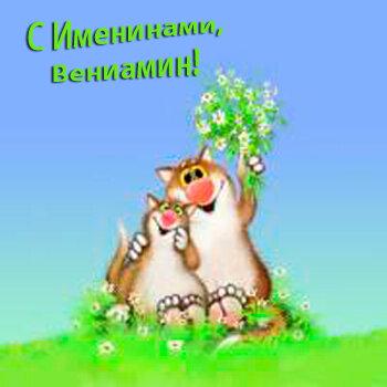 С именинами, Вениамин! открытка поздравление картинка