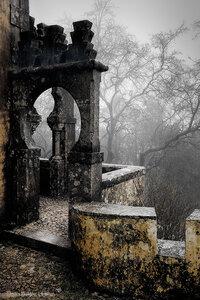 Туманная Пена