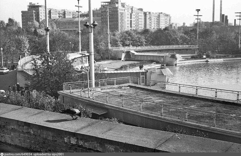 Ворона и бассейн