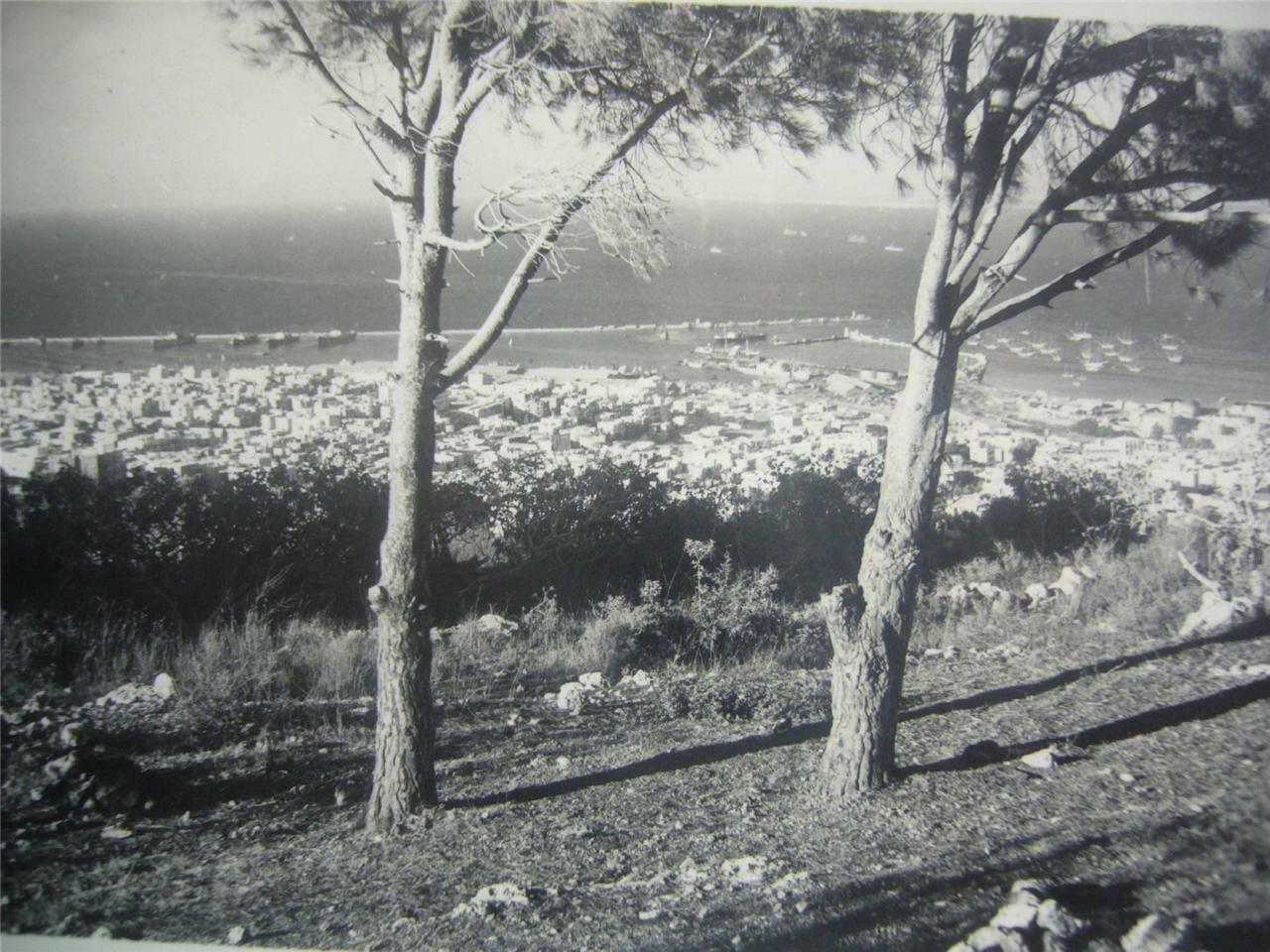 Панорама Хайфы с горы Кармель