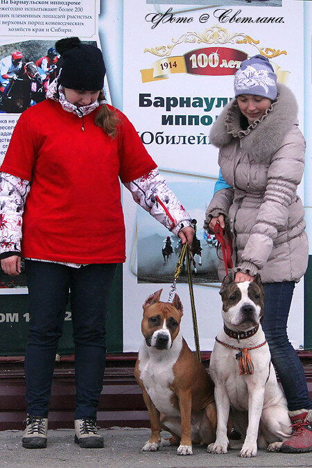 https://img-fotki.yandex.ru/get/9816/225487091.8f/0_120925_ca75df4f_XL.jpg