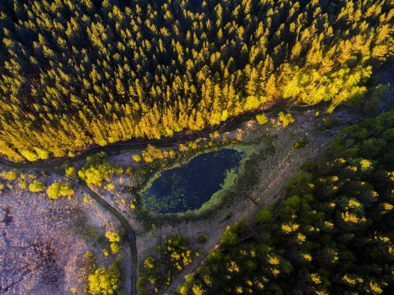 Непостижимая красота дикой природы России. Фотоконкурс National Geographic 0 1b379f c77a451 XL