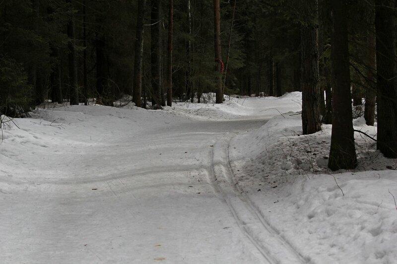 Лыжня в Порошино в марте