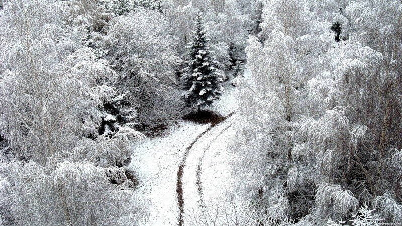 http://img-fotki.yandex.ru/get/9816/97761520.12f/0_81cf8_3c5f5a40_XL.jpg