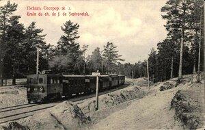 Поезд Сестрорецкой железной дороги