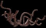 осьминог (3).png