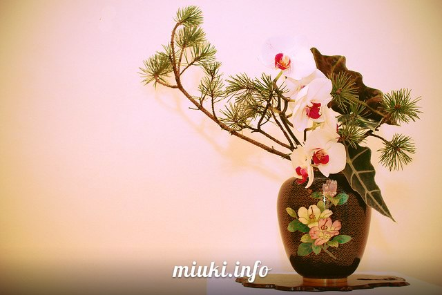 Японская икебана - модель мироздания