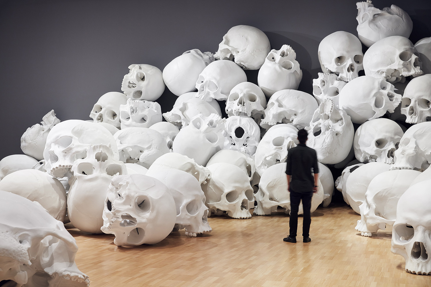 100 Fiberglass and Resin Skulls Fill a Room at the National Gallery of Victoria in Melbourne (10 pics)