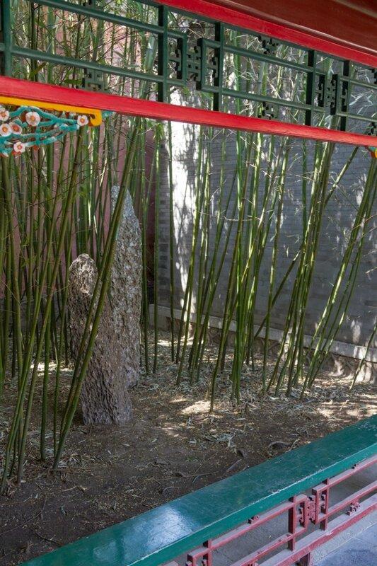 Бамбуки, парк Чжуншань гунъюань, Пекин