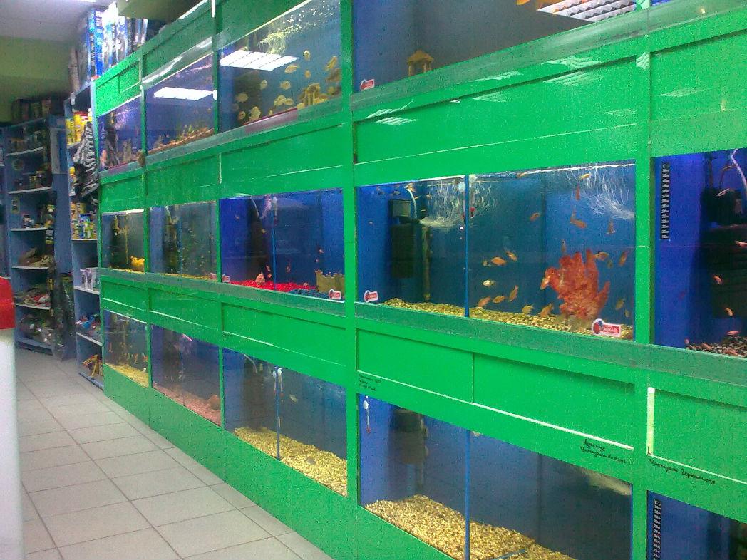 отдел аквариумистики