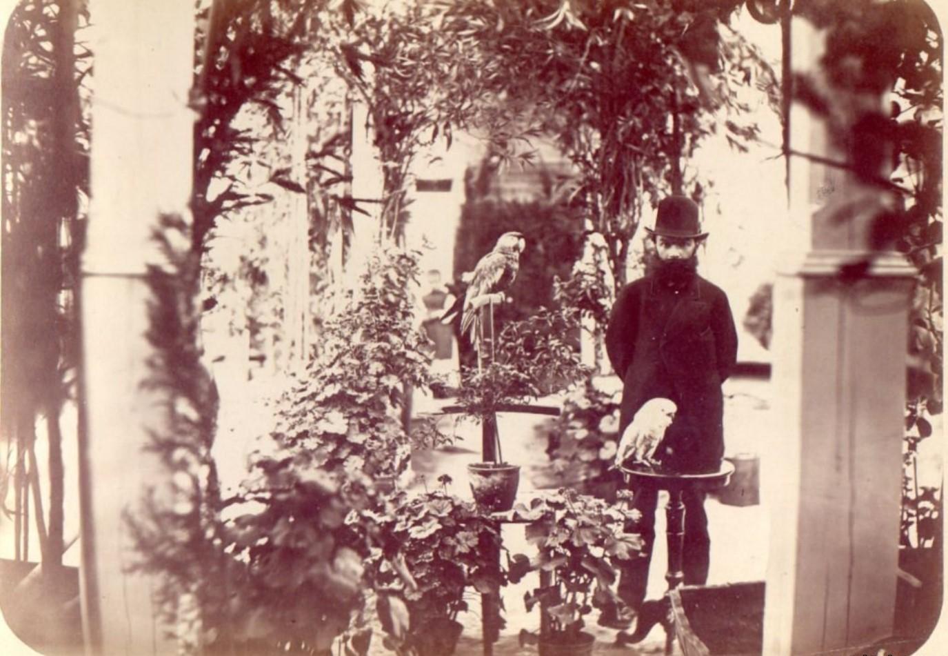 Дворец М.Д.Бутина. Оранжерея