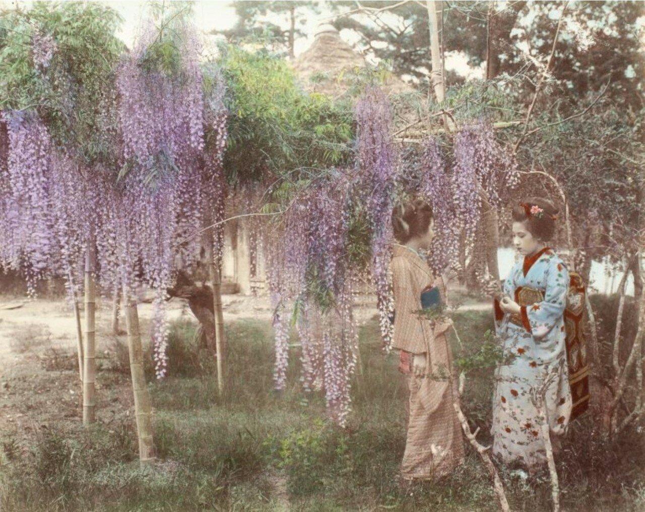 Гейши, ок 1890