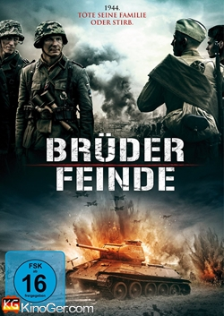 Brüder / Feinde (2015)