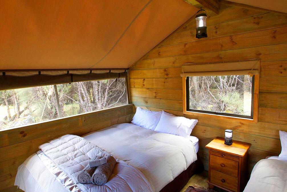 Сафари лагерь Поронуи Новая Зеландия Глэмпинг