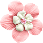 KMILL_flower-a.png