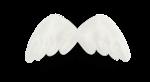 natali_design_dream_wings2-sh.png