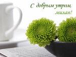 С добрым утром, милая! Цветы ждут тебя! открытки фото рисунки картинки поздравления