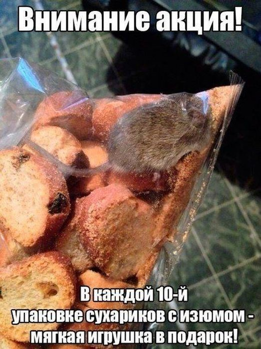 http://img-fotki.yandex.ru/get/9818/252028825.102/0_e152f_3aebee8a_orig.jpg