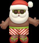 Sunny Santa