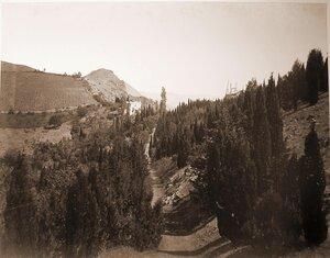 Вид аллеи в горах у деревни Кучук-Ламбат; слева на втором плане - виноградники.