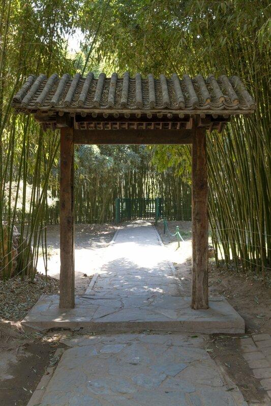 Вход в бамбуковый сад